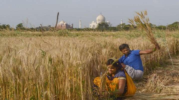 Kisan Rath, Kisan Rath app, COVID 19, Modi government, Agriculture Minister Narendra Singh Tomar, Ki