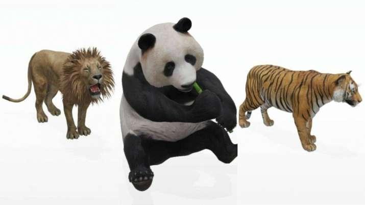 google, google 3d animals
