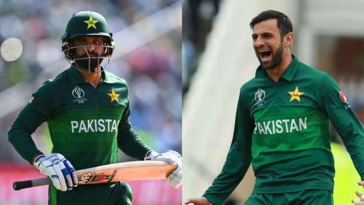 mohammad hafeez, shoaib malik, ramiz raja, pakistan cricket team, pakistan cricket, pakistan cricket