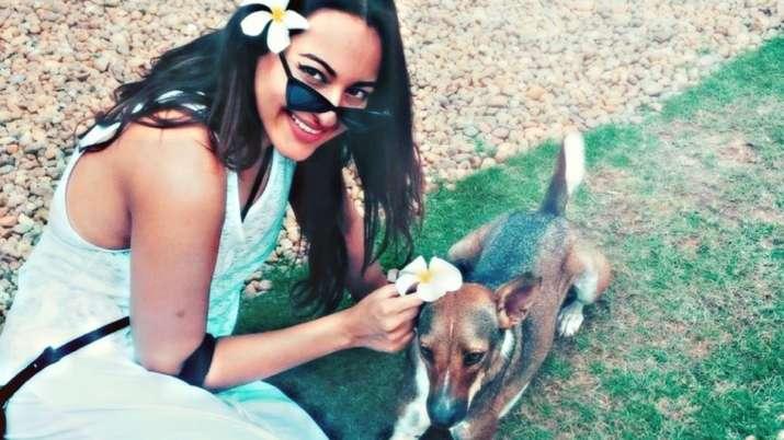 Sonakshi Sinha calls people abandoning pet dogs 'idiots'