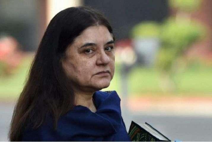 Maneka Gandhi/FILE