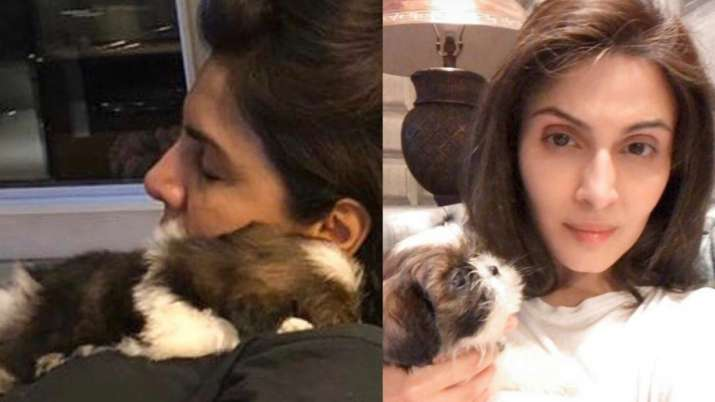 Neetu Kapoor's daughter Riddhima introduces her to new member of Kapoor family- Doodle