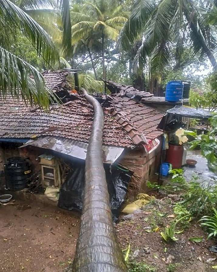 India Tv - A tree fell on a house after rains and strong winds triggered by Cyclone Nisarga, in Sindhudurg district of Maharashtra, Wednesday