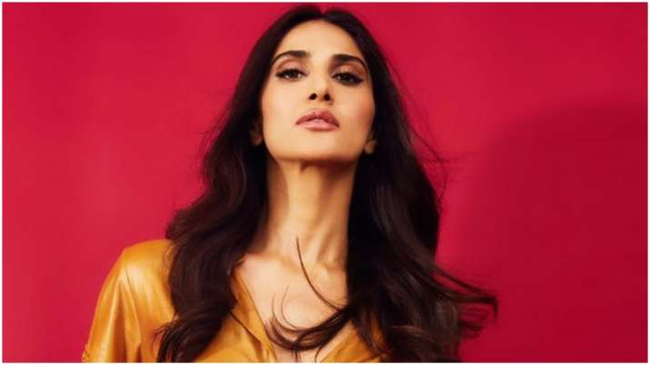 Vaani Kapoor shuts down troll who called her 'ugly', check out her epic reply