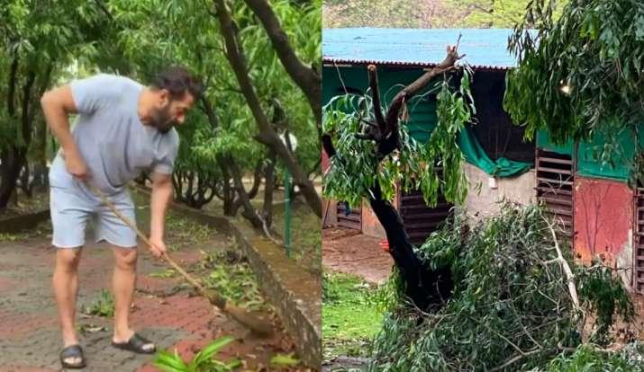 Salman Khan S Panvel Farmhouse Affected By Cyclone Nisarga Easynews English Hindi News World News National News Easynews Login Traptown News Media India