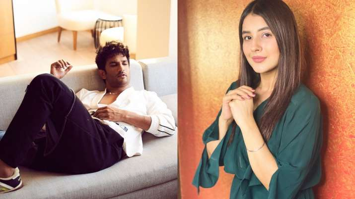 Bigg Boss 13 fame Shehnaaz Gill shares thought-provoking post after Sushant Singh Rajput's death