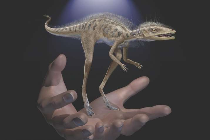 This illustration provided by the American Museum of Natural History in July 2020 depicts a Kongonap
