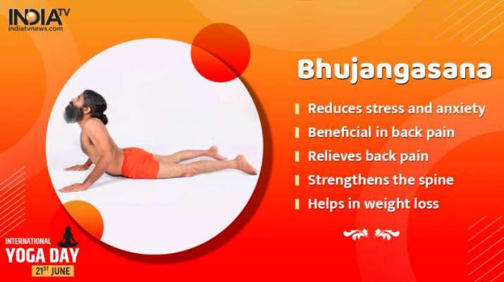 India Tv - Benefits of Bhujangasana