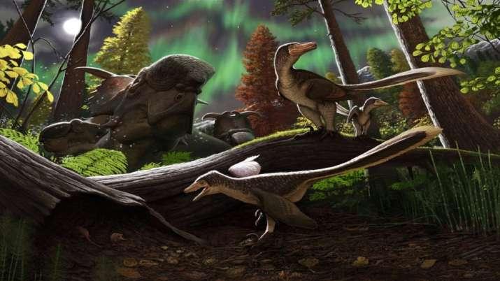 Rare fossil of dinosaur found in Alaska may alter your idea