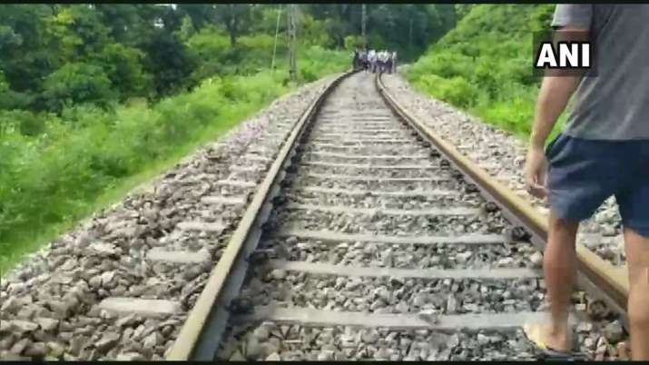 India Tv - Elephant dies after being hit by train in Uttarakhand