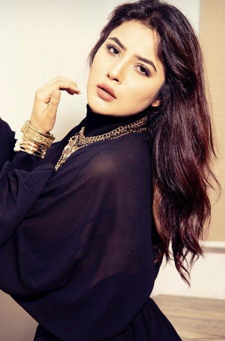 India Tv - Shehnaaz Gill breaks the internet with sassy Instagram photos