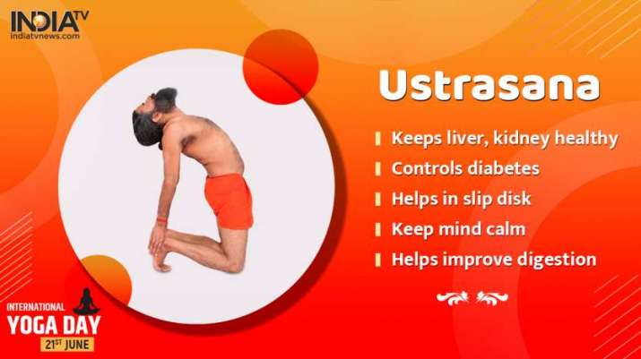 India Tv - Benefits of Ustrasana