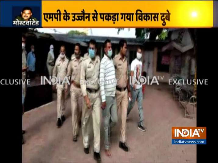 Most wanted gangster Vikas Dubey has been arrested in Ujjain