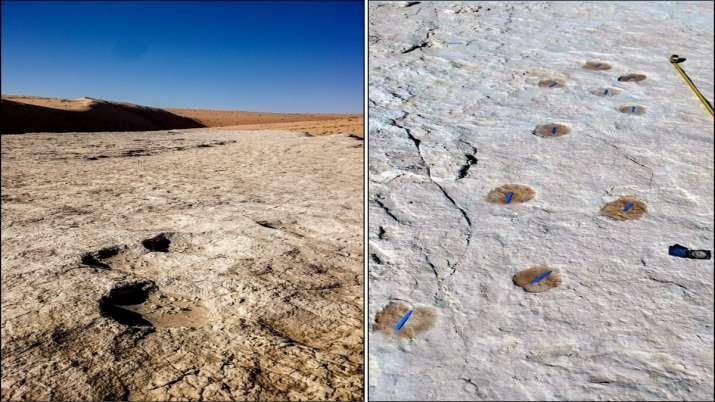 India Tv - 1,20,000-year-old human footprints
