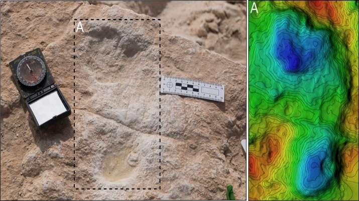 1,20,000-year-old human footprints