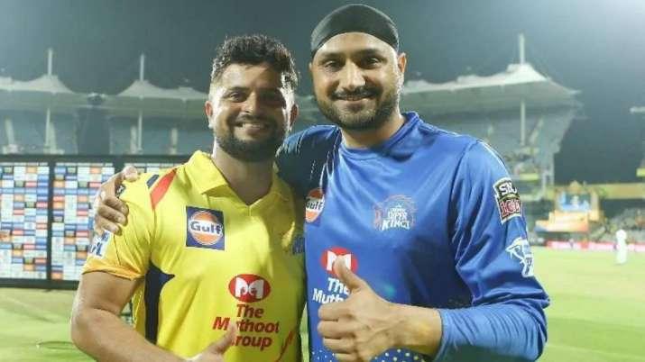 IPL 2020 | Chennai Super Kings not 'looking at anybody' to replace Suresh  Raina, Harbhajan Singh | Cricket News – India TV
