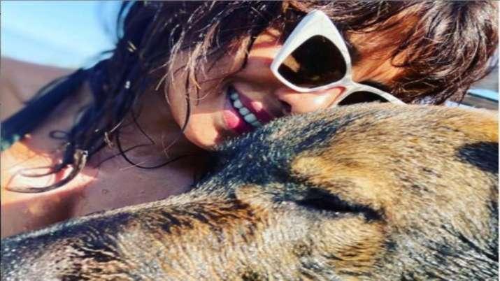 Priyanka Chopra shares selfie with her 'Lil Big Boy'