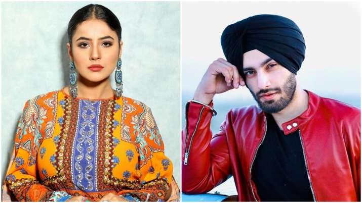 Bigg Boss 14: Shehzad Deol feels Shehnaaz Gill 'opened doors for Punjabi talent'