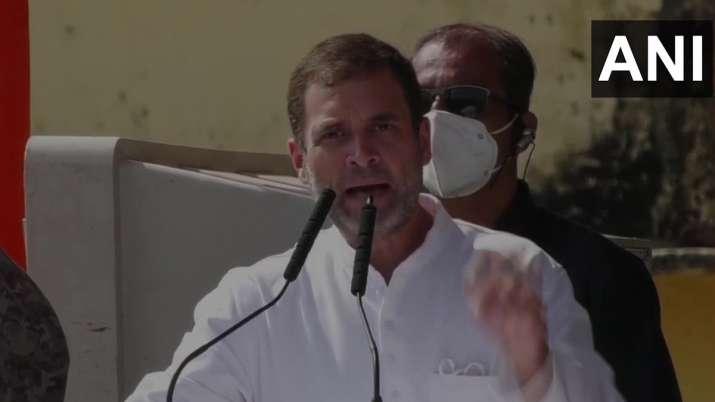 Rahul Gandhu has accused PM Modi and CM Nitish Kumar of not
