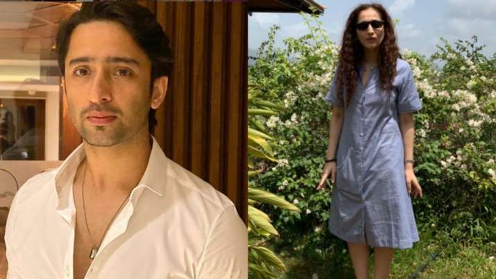 Did TV actor Shaheer Sheikh make his relationship with Ruchikaa Kapoor official? Check out