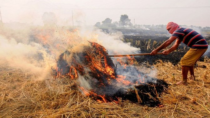 At 40 per cent, stubble burning contribution in Delhi's