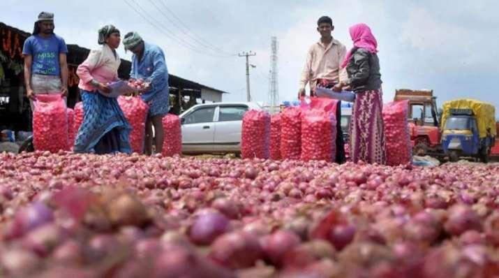 onion supply