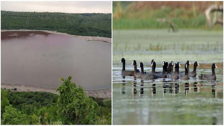 Maharashtra's Lonar lake and Agra's Sur Sarovar added to list of recognised sites under Ramsar Conve