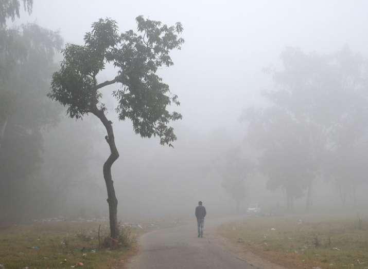 Delhi temperature today, Weather forecast, Delhi weather cold wave, Delhi minimum temperature, Delhi