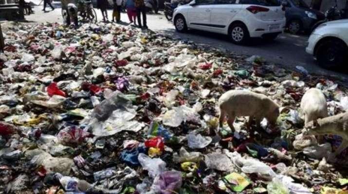 Andhra govt suspends panchyat commissioner over dumping of garbage in front of banks