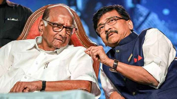 sharad pawar, upa chairperson