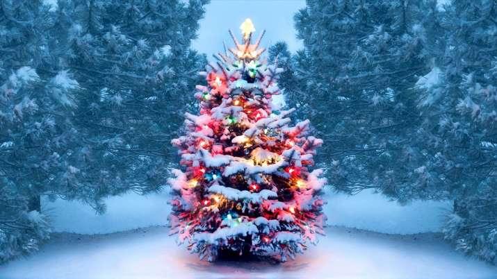 کریسمس مبارک 2020: آرزوها ، نقل قول ها ، تصاویر HD ، تبریک های فیس بوک ، وضعیت WhatsApp ، پیام برای