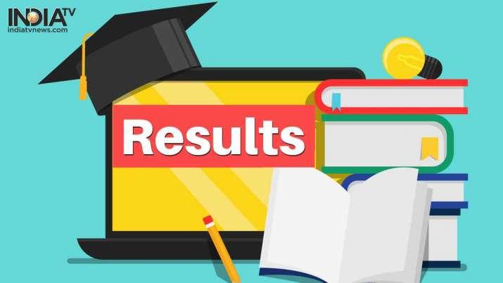 CCSU BEd Result 2020 declared