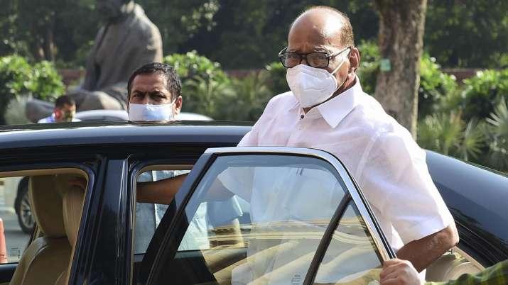 sharad pawar sonia gandhi, ncp, ncp official statement, sharad pawar sonia gandhi UPA chairperson, u