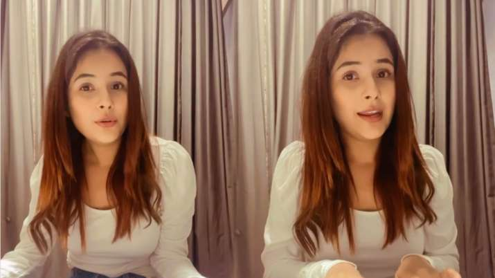 Shehnaaz Gill treats fans with her version of Waada Hai song. Video goes viral