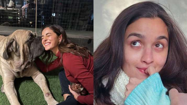 Alia Bhatt shares glimpse of Ananya Panday with Ranbir Kapoor's dog. Seen yet?
