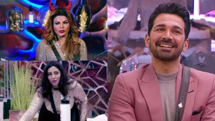 Bigg Boss 14: Why are Arshi and Rakhi desperate to win Abhinav's love?
