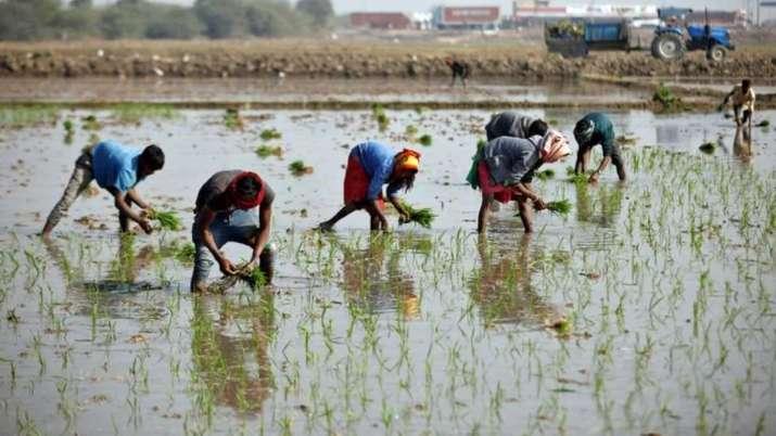 Budget 2021: Rural poor, farmers' progress to be govt's priority