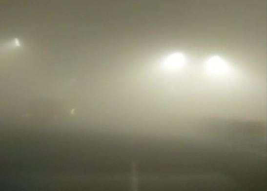 Dense fog shrouds Delhi