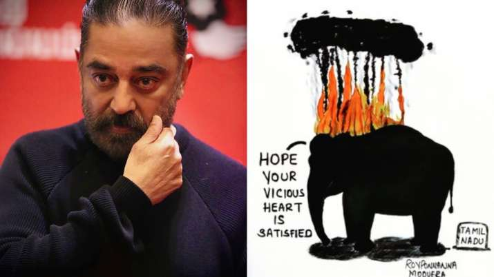 elephant death by burning tyre celebrities reaction