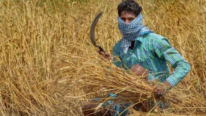 farm laws india