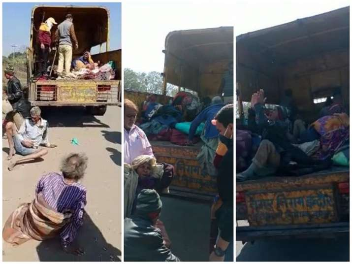 Indore official suspended after video captures municipal workers trying to 'dump' homeless