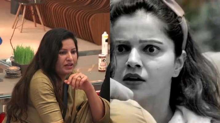 Bigg Boss 14, Rubina Dilaik, Sonali phogat