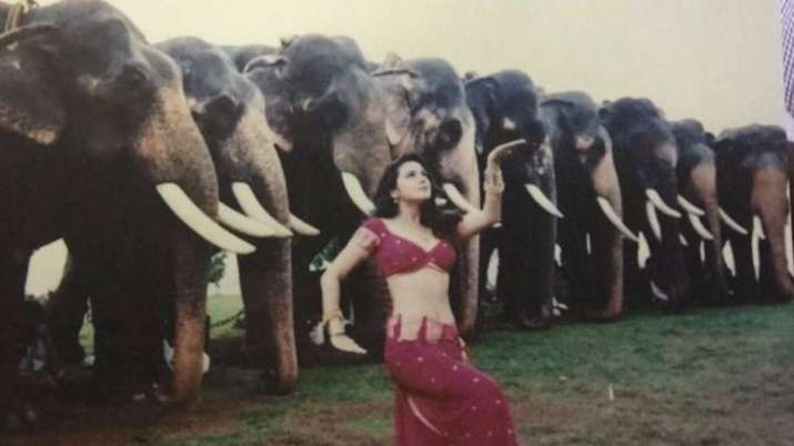Dancing with tuskers on 'Jiya Jale': Preity Zinta's favourite picture from Dil Se
