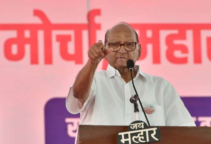 Appeal farmers to go back, shouldn't give any opportunity to govt to blame you: Sharad Pawar thumbnail