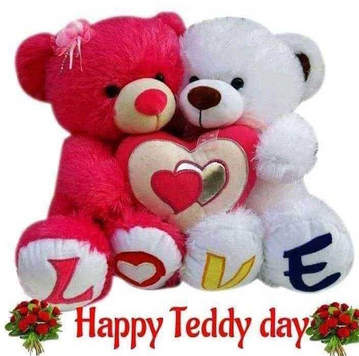 India Tv - Teddy Day