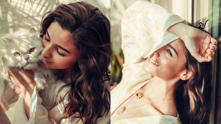 Alia Bhatt's 'sunshine' Sunday is all about cats | see pics