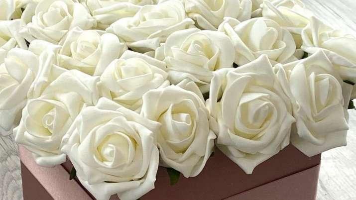 India Tv - White Rose