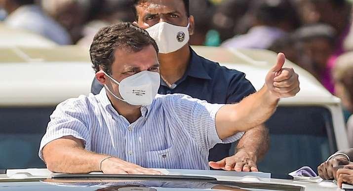 rahul gandhi, rahul gandhi news, rahul gandhi rss, rss news, what is rss,  Rashtriya Swayamsevak San