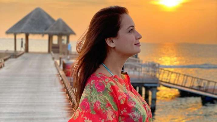 Mom-to-be Dia Mirza shares her 'Work from home' look amid COVID 19 lockdown   PIC