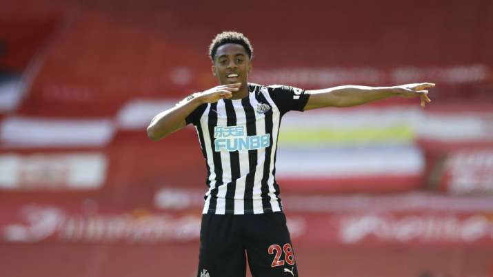 Newcastle's Joe Willock celebrates after scoring his side's